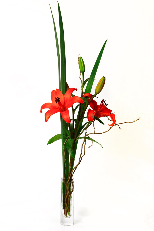 La Mejor Flor